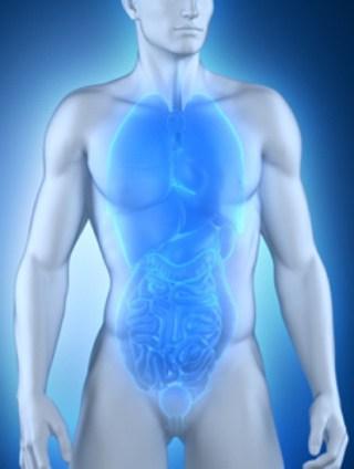Autogenes Training - vegetatives Nervensystem